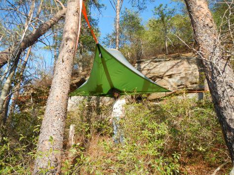 Tentsile in the trees, a newer way to camp.