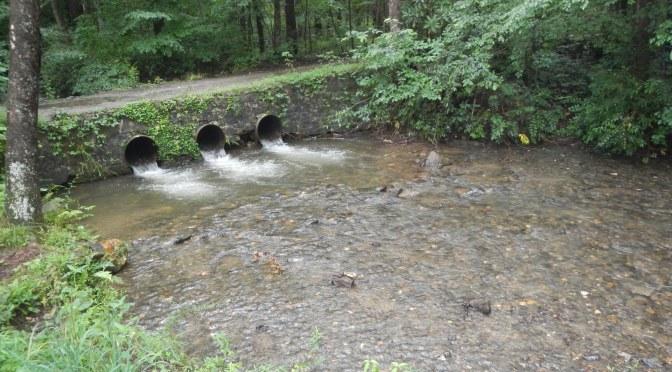A Weekend At Tumbling Creek