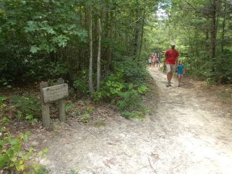 This trail is a popular well travelled trail.
