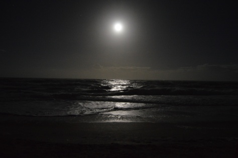 Moonlight on Vilano Beach, FLA